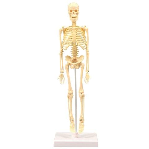 """Juego de construcción Artec """"Esqueleto"""" - Vista prévia 2"""